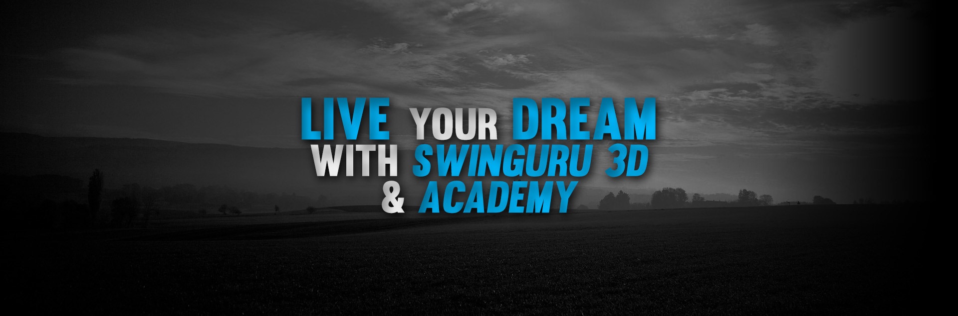 Live your dream with swinguru 3d & academy